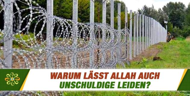Warum lässt Allah auch Unschuldige leiden?